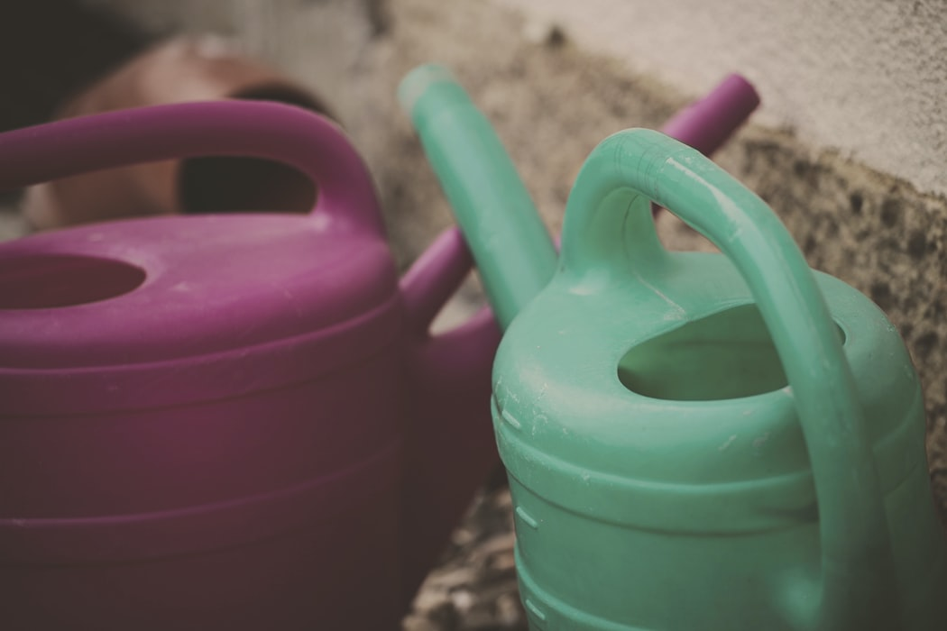 SG watering can.jfif